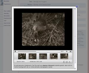 Historische Filme von Konrad Lorenz in GetInfo