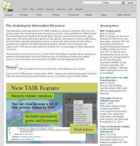Startseite der Datenbank TAIR